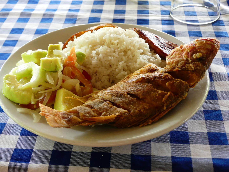 Pescado, arroz con coco, ensalada Pijibalodge