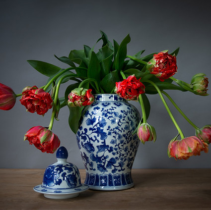 Franse tulpen-.jpg