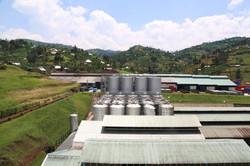 Heineken Brewery in Gisenyi, Rwanda