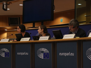 Energy Poverty Report Launched in European Parliament
