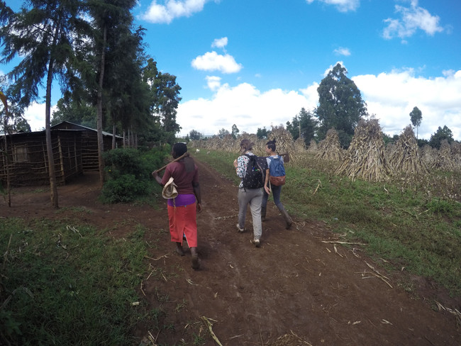 #Week 6 l Team 4: Cutting down the maize