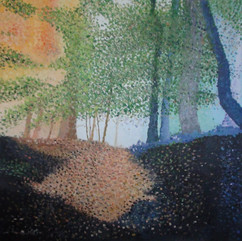 'Forest Noise'