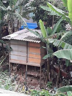 Barraco Favela Portelinha