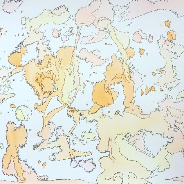 orgasmic map