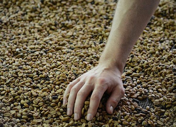 Organic washed coffee 3 KG