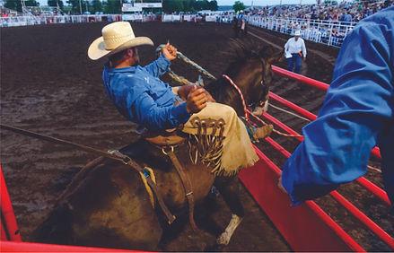 Morgan Rodeo Cowboy.jpg
