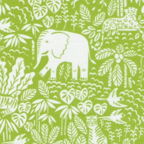 *PRE-ORDER* Jungle Paradise Elephants in Seedling £3.75fq/£15pm