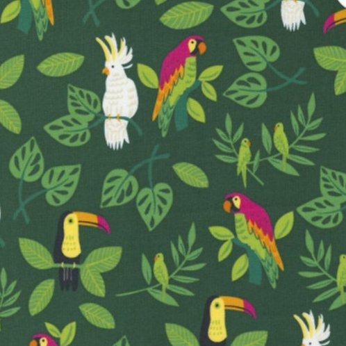 *PRE-ORDER* Jungle Paradise Birds of Paradise Palm £3.75fq/£15pm