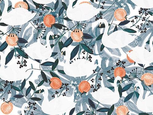 *Pre-Order* Dashwood Studio Spice Swans in Blue (£3.25fq/£13.00pm)