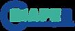 Logo Diaper 100-01.png