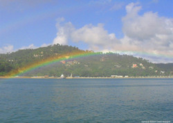 rainbow sam (Large).JPG