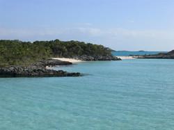 Bahama rock scrub plus (Large).JPG