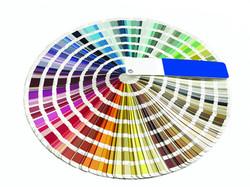 Color Book.jpg