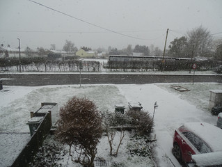 As I write today, it is Snowing Hard, the first real Snow this Winter!