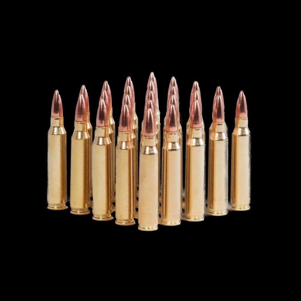 .223 FMJ Reman Ammunition