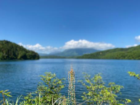 いよいよ明日から今シーズンの野尻湖サップオープン