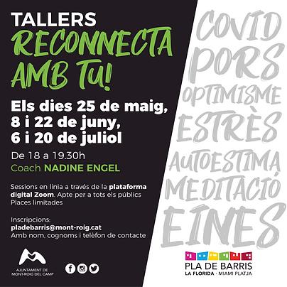 Tallers_PladeBarris.png