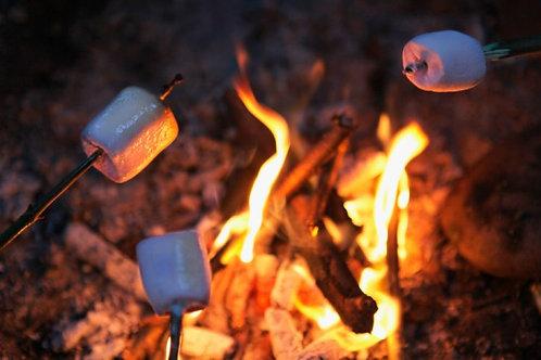 Cozy Campfire Minis