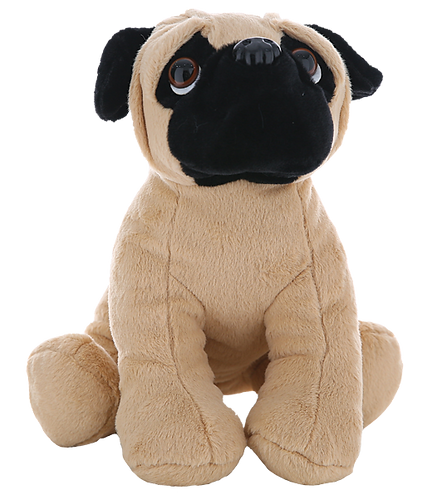 Pugsley the Pug