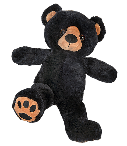 Benjamin the Black Bear