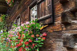 Front of an old farm house with flower box