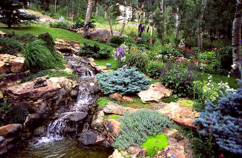 perennial garden and waterfall.JPG