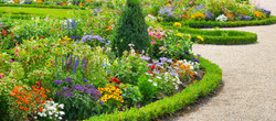Lush flower beds in the summer garden.jpg A bright sunny day.jpgWide photo
