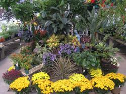 09 Greenhouse.jpg