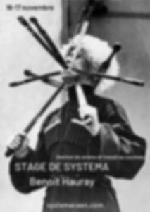 STAGE DE SYSTEMA Benoit Hauray nov 2019.