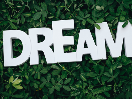 How to Be DRIVEN by Your DREAMS