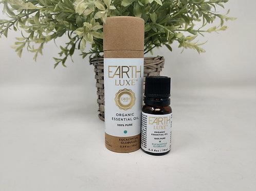 Pure Organic Essential Oil, EUCALYPTUS GLOBULUS, Earth Luxe