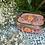 Thumbnail: Kashmir Lunchbox - Pink