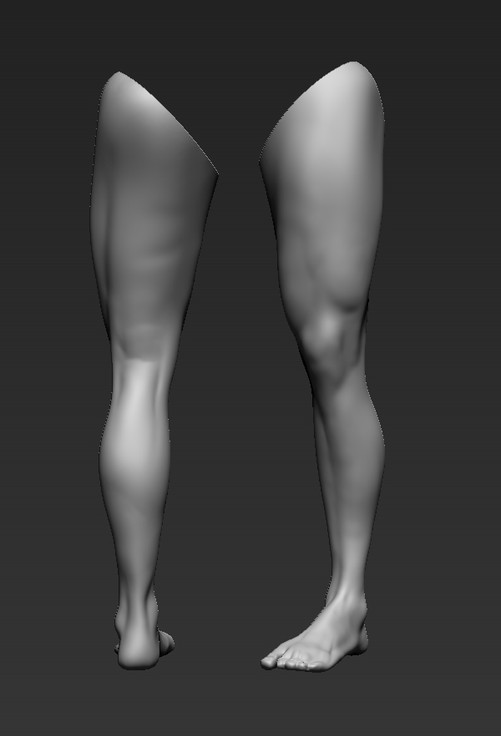 Quick Leg Study