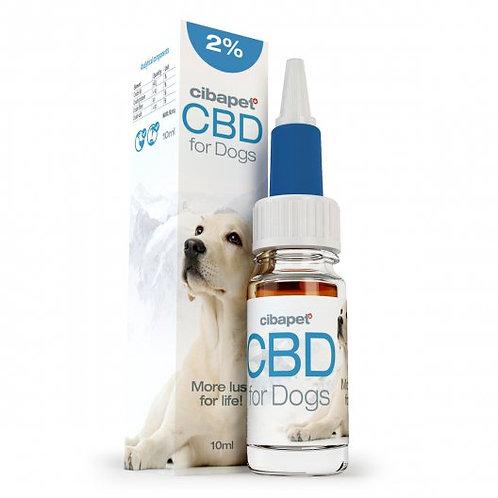 Oil 4% CBD for dogs