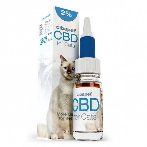 Oil 4% CBD for cats