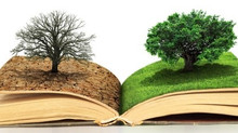 Criando hábitos de leitura nos alunos.