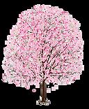 Crujinha lilás transparente png
