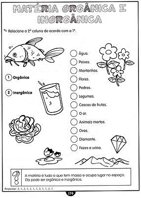 Atividades escolares - Ciências - Ensino Fundamental