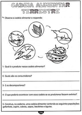 Atividades escolares - Ciências - png