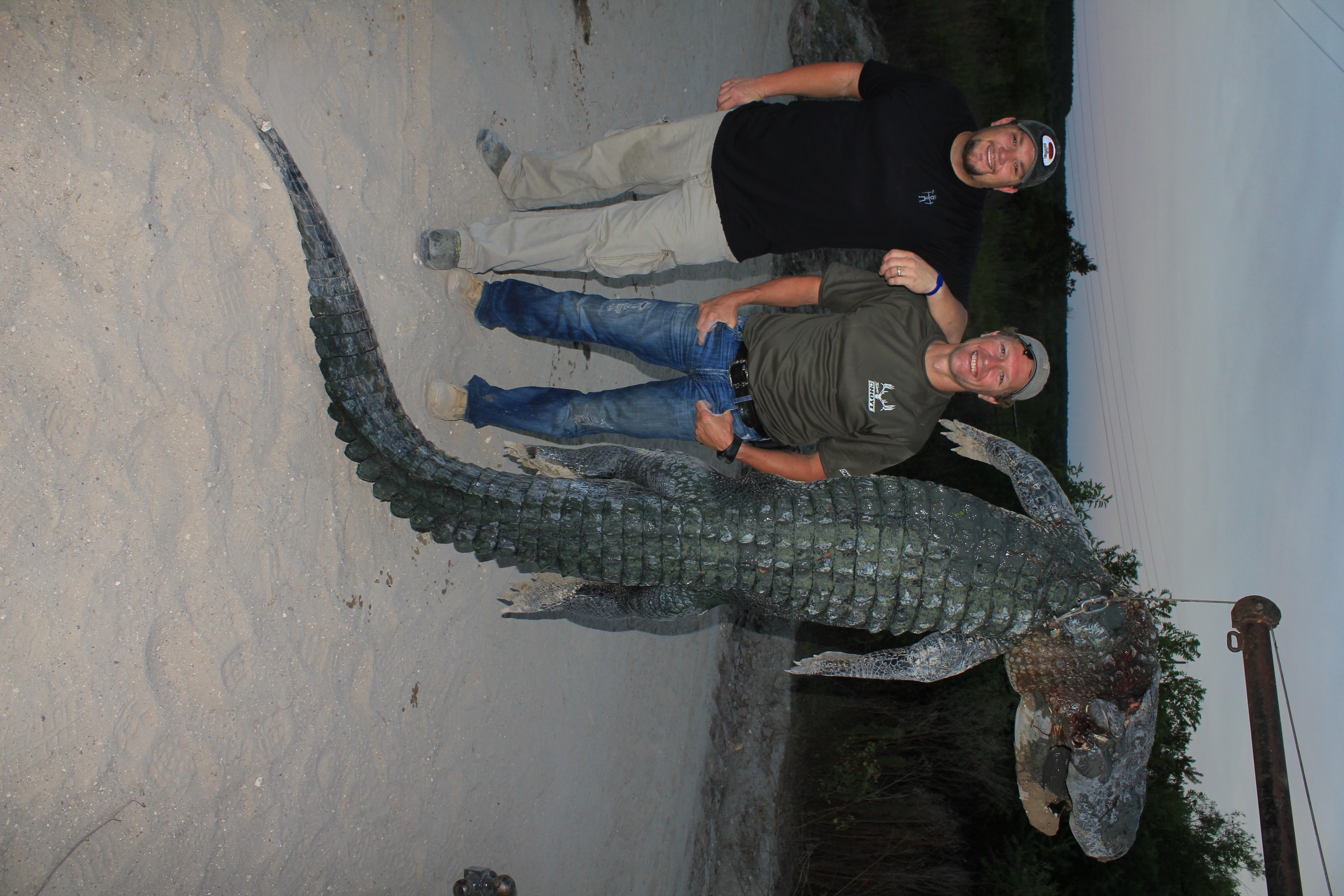 ATTO-S05-Florida-Craig-Gator-003