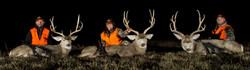 ATTO-S06-Nebraska-Jon_Gina_Brad-Mule Deer_002
