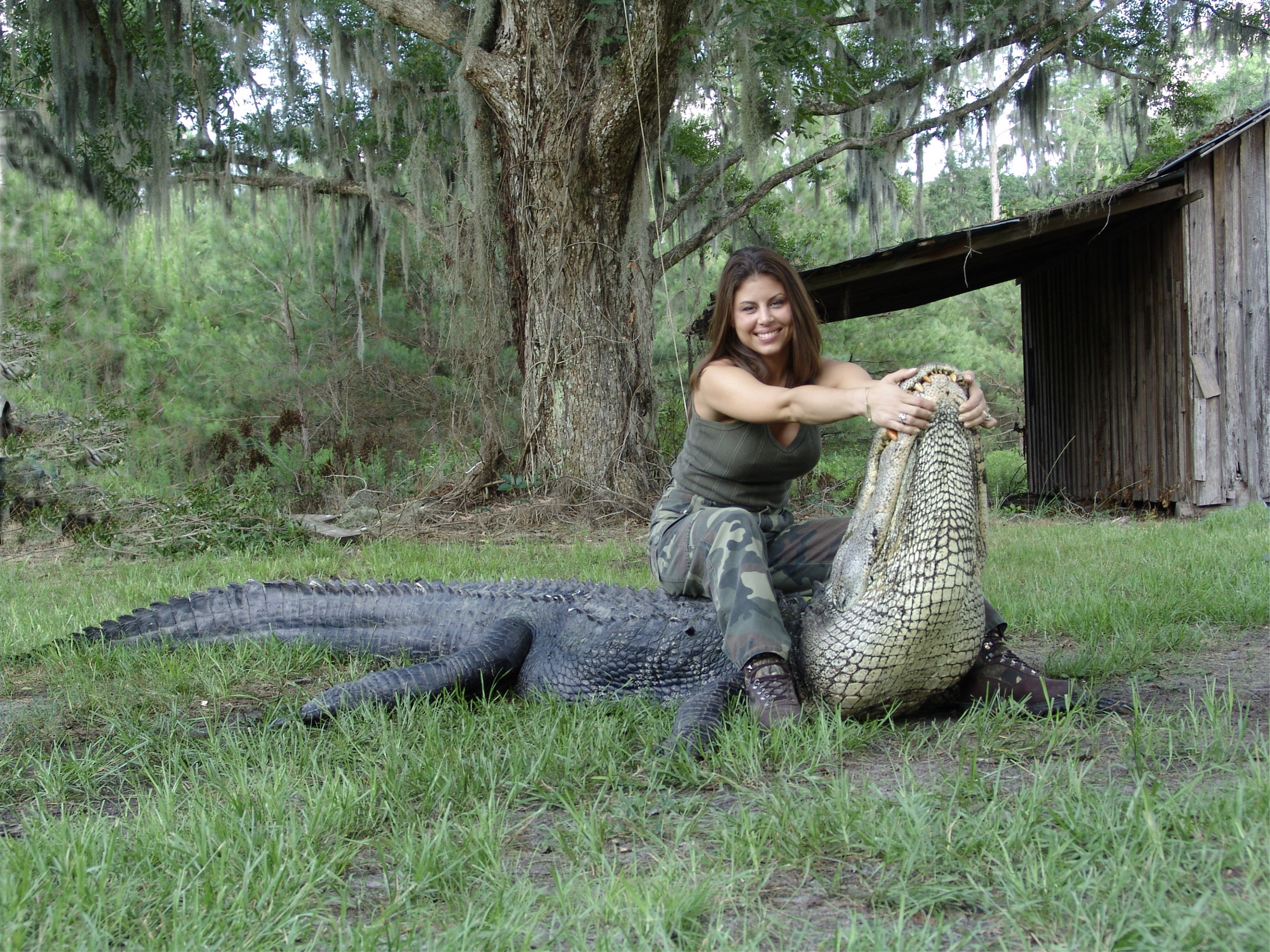 ATTO-S03-Florida-Gina-Gator-001