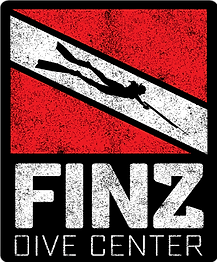 FINZ-NEW-LONG-TEXTURE.png
