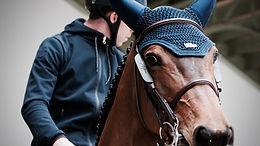 התנהגות – לב ליבו של כל מה שאנחנו עושים עם סוסים וחמורים