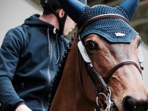 Descobertas sobre Cavalos e Seres Humanos