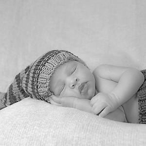 Baby Albert