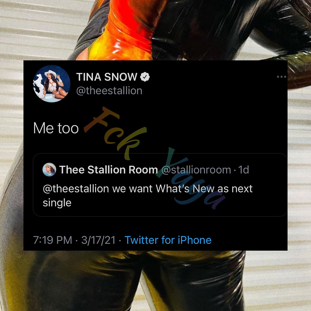 Megan Thee Stallion tweets Hottie about What's new