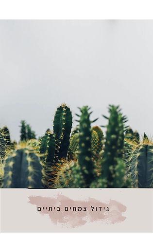 צמחים2.jpg