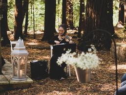 Sarah Milner - Wedding Violinist