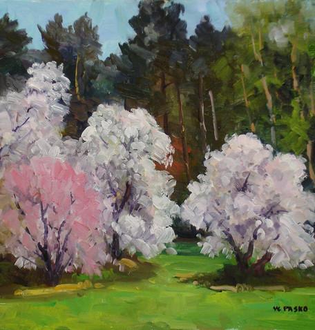 Walt Pasko Flowering Trees.JPG